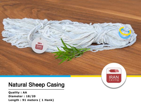 sheepcasing-blueyellow
